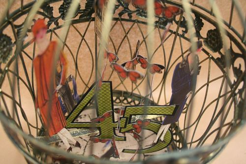 Altered Cage - Looking down inside